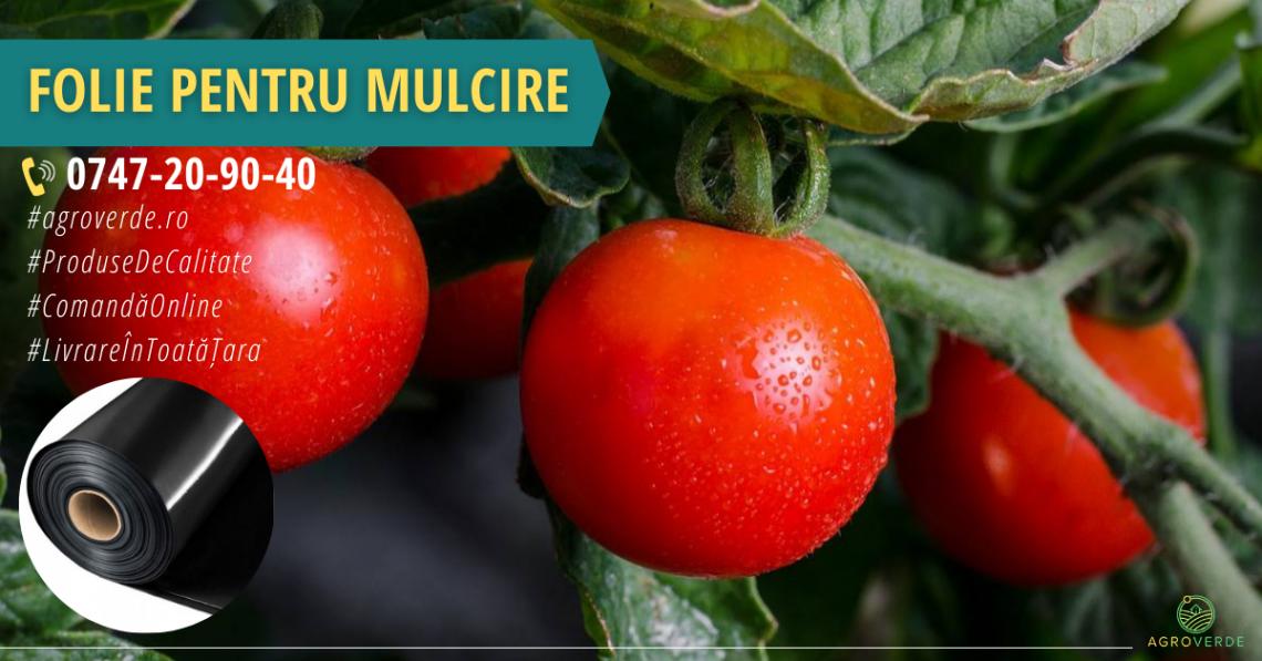 Ce avantaje are o folie mulcire pentru roșii?