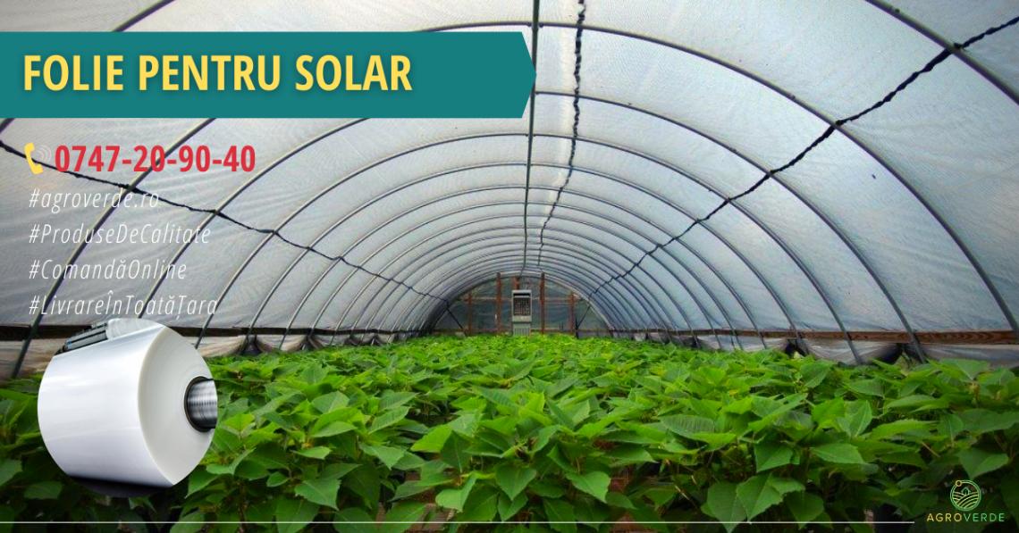Folie solar profesională pentru sere și solarii