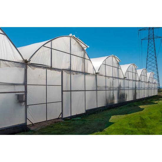 Folie pentru sere/solarii 10 m - latime (3 straturi - 180 microni)